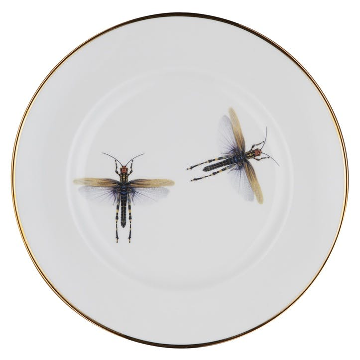 Urban Nature Dragonfly Dinner Plate