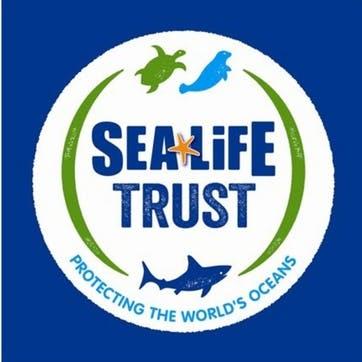 A Donation Towards Sea Life Trust