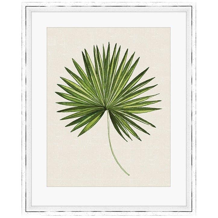 Summer Thornton Tropical Leaf III Framed Print, 55 x 45cm