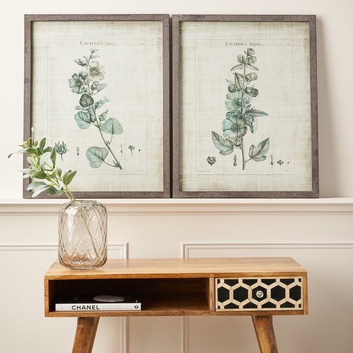 Framed Lavatera Prints, Set of 2