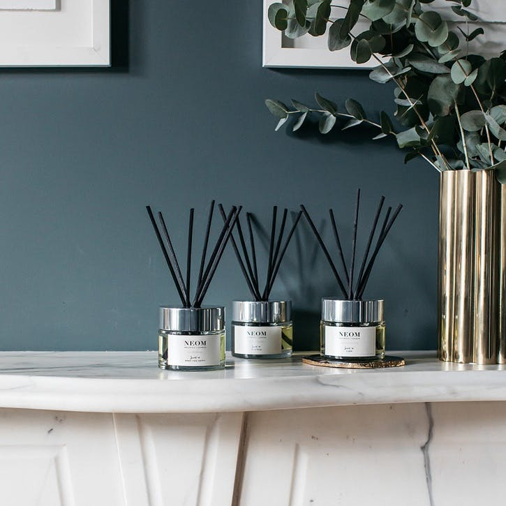 Scent to Boost Your Energy, Reed Diffuser Feel Refreshed, 100 ml