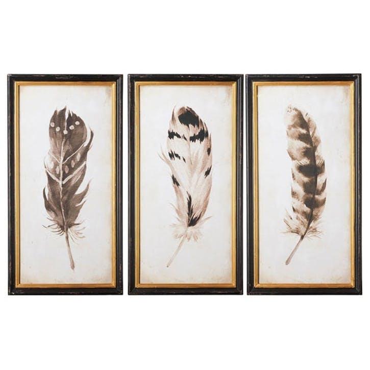 Pluma Framed Prints, Set of 3