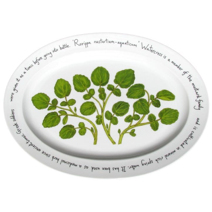 Watercress Oval Plate - 39cm