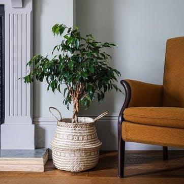 Seagrass Tribal, Lined Basket Medium, White