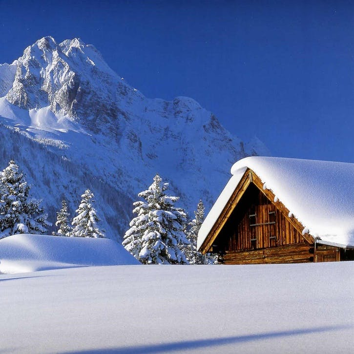 Winter Honeymoon Fund £100