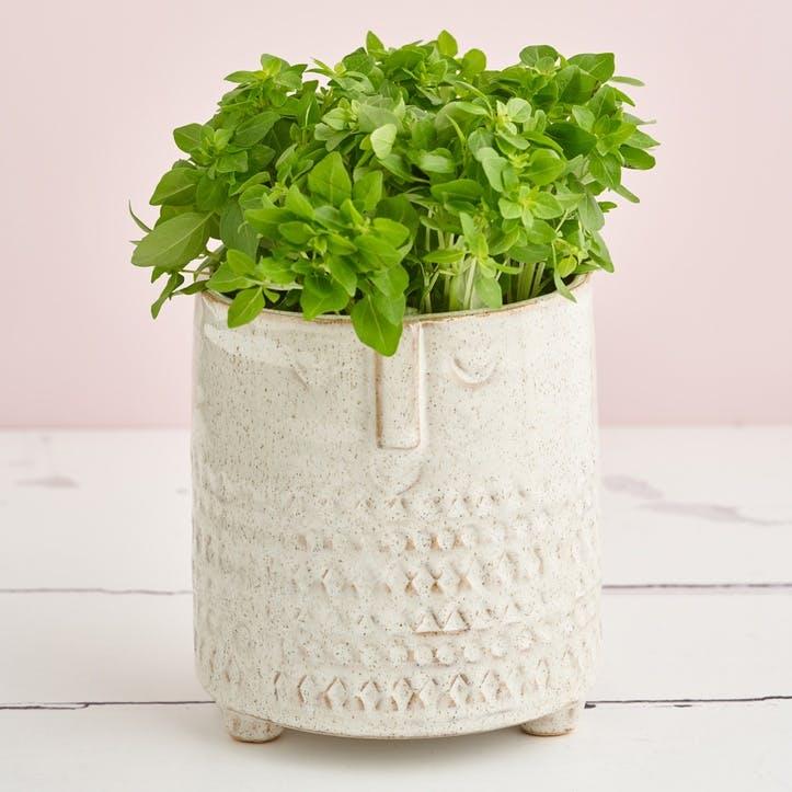 Zen Face Plant Pot