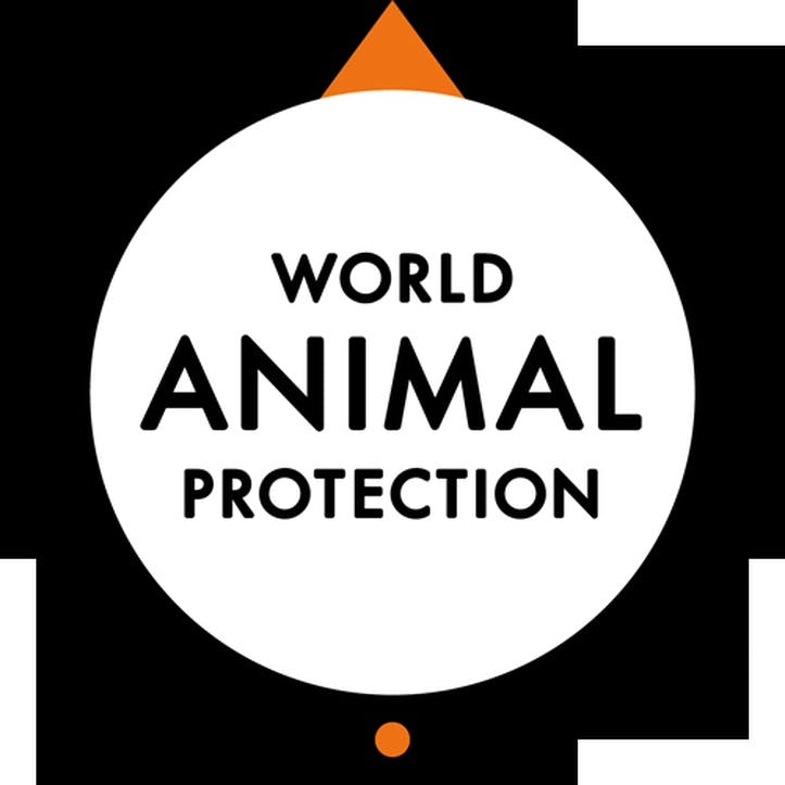 A Donation Towards World Animal Protection