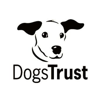 A Donation Towards Dogs Trust