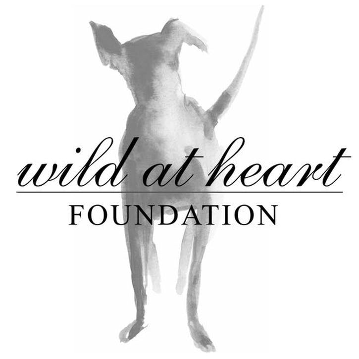 A Donation Towards Wild at Heart Foundation
