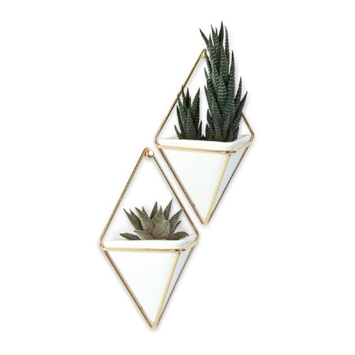 Trigg Wall Vessel Set of 2, White Brass