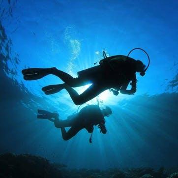 Honeymoon Scuba Diving Trip Contribution £100
