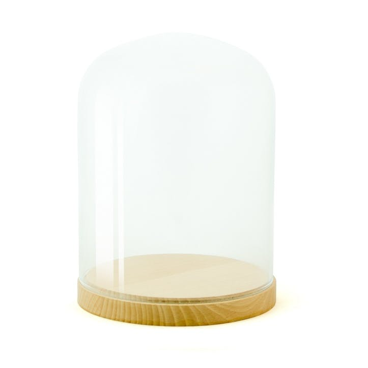 Pleasure Dome Beech, Medium