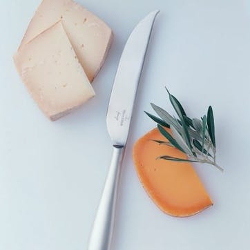 Kensington Fromage Hard Cheese Knife
