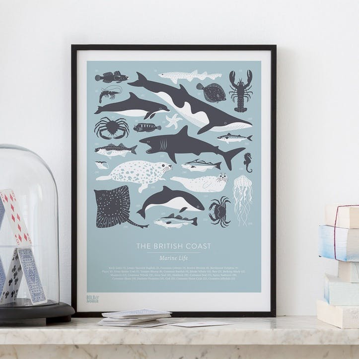 British Coast Marine Life Screen Print, 30cm x 40xm, Duck Egg Blue