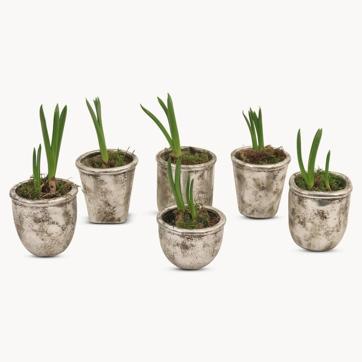 Burnished Silver Planters, Set of 6