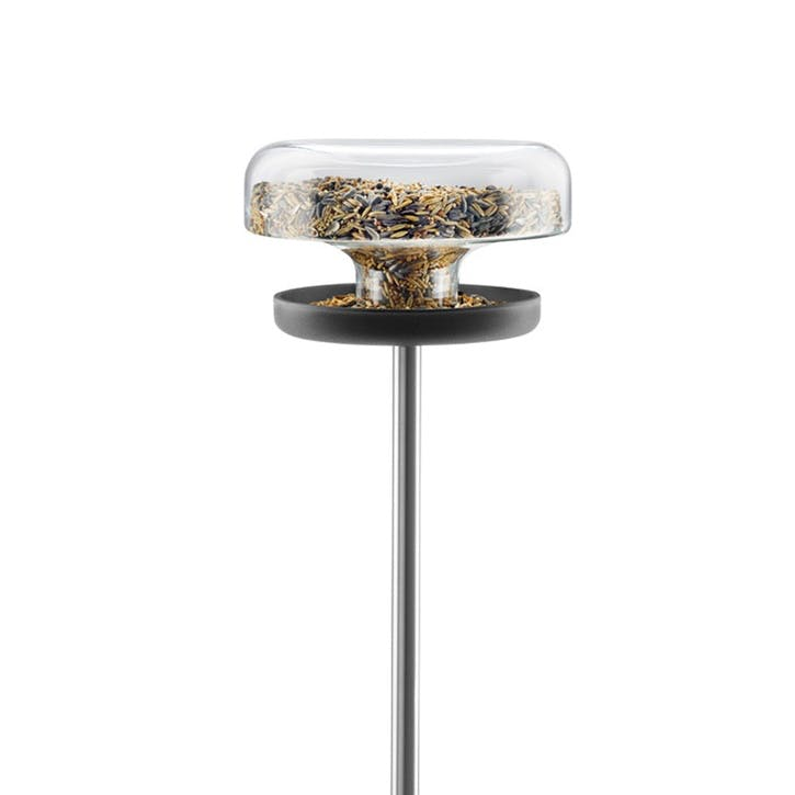 Bird Table, Clear