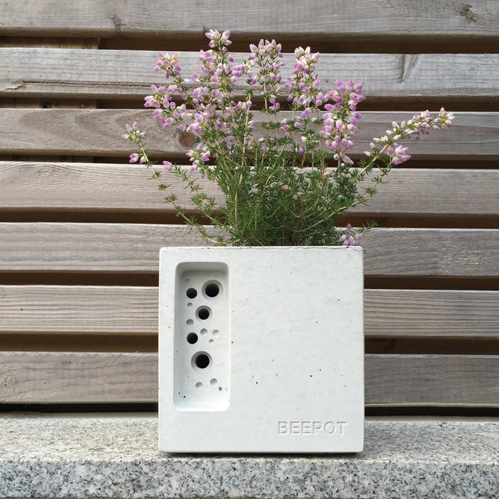 Beepot Concrete Planter and Bee House - Mini; White