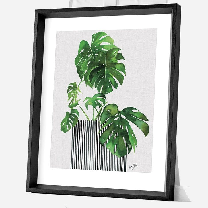Summer Thornton Swiss Cheese Plant Framed Print, 55 x 45cm