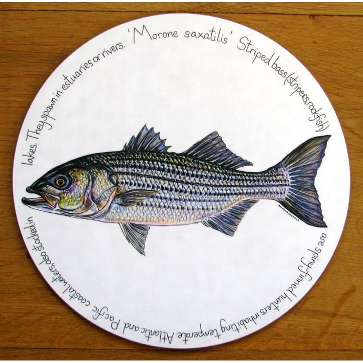 Striped Bass Tablemat - 28cm