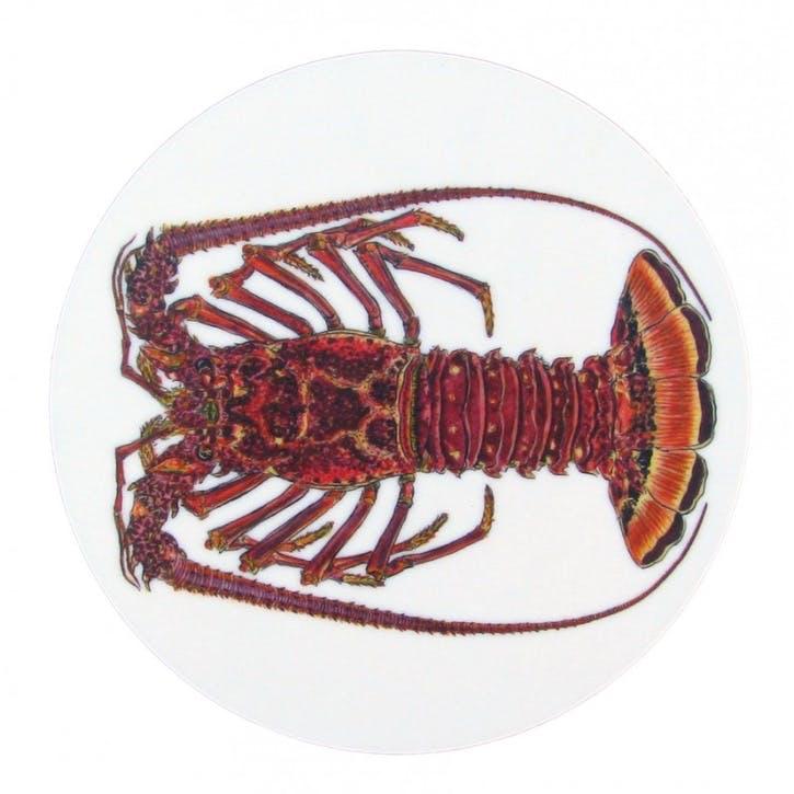 Spiny Lobster Coaster - 10cm