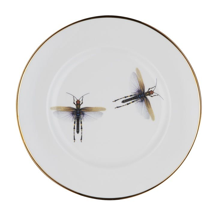 Urban Nature Dragonfly Salad Plate