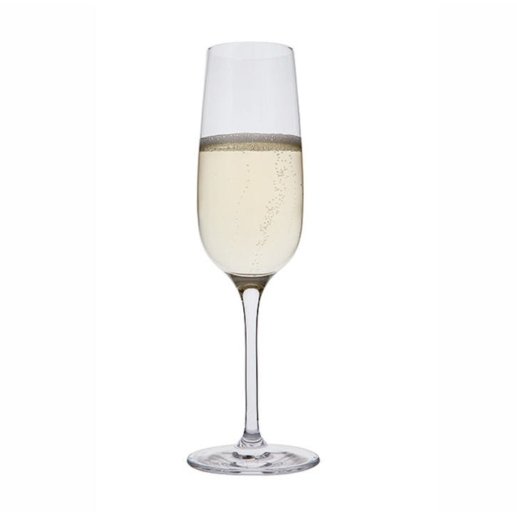Drink Champagne Flutes, Set of 6
