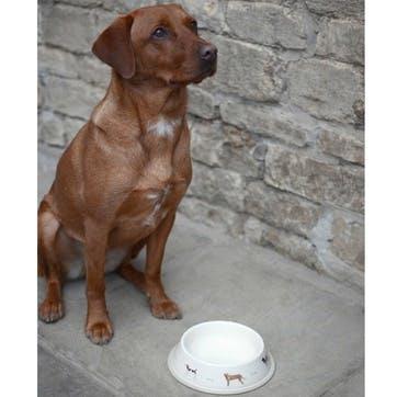 'Woof!' Dog Bowl - Large