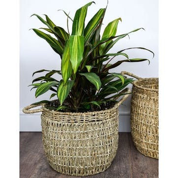 Seagrass, Set Of 2 Lined Baskets, Natural