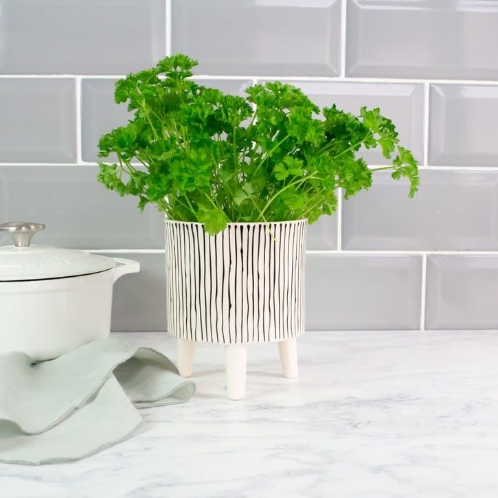 Mini Standing Planter, Monochrome Stripe