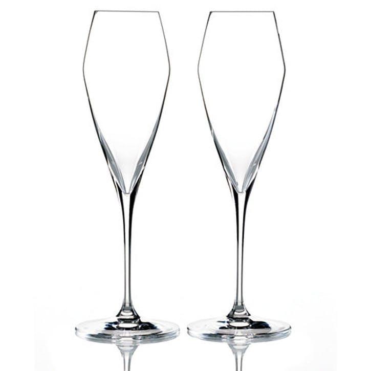 Vitis Champagne Glass, Set Of 2