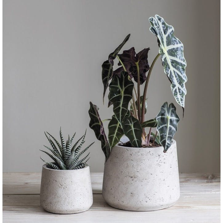 Stratton Set of 2 Tapered Cement Bowls, Stone