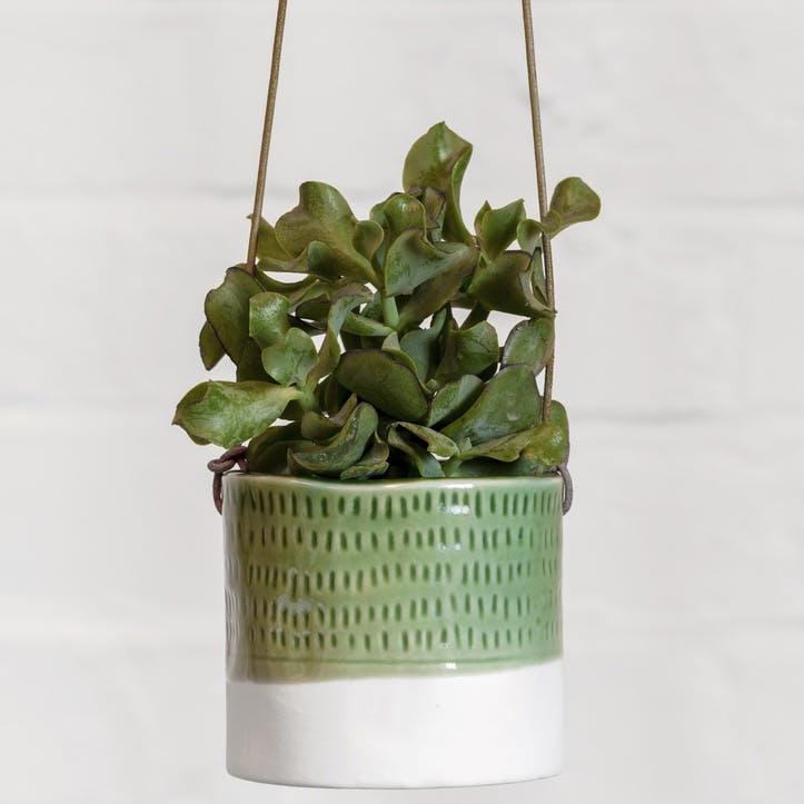 Indoor Hanging Pot, Pie Crust Design