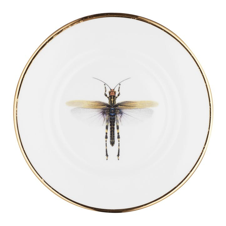 Urban Nature Dragonfly Side Plate