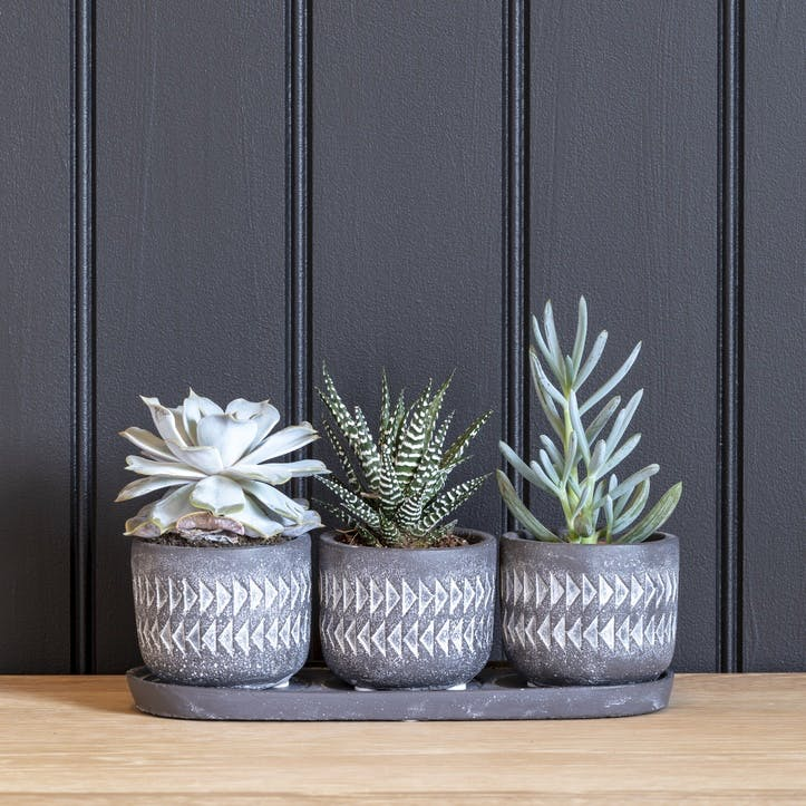 Aztec Indoor Plant Pots, Set of 3