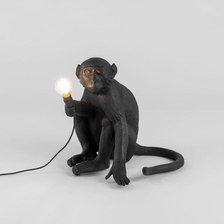 Outdoor Monkey Light, Sitting