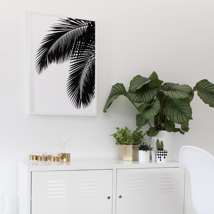 Palm Leaves Print - 50 x 70cm