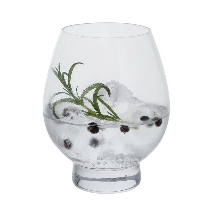 Gin Connoisseur Tumbler, Set of 2