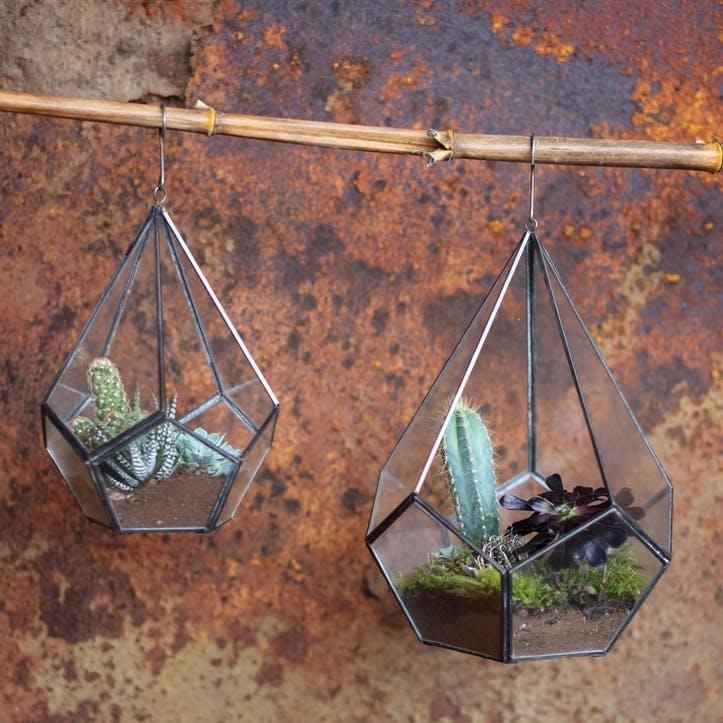 Manduri Hanging Terrarium - Large