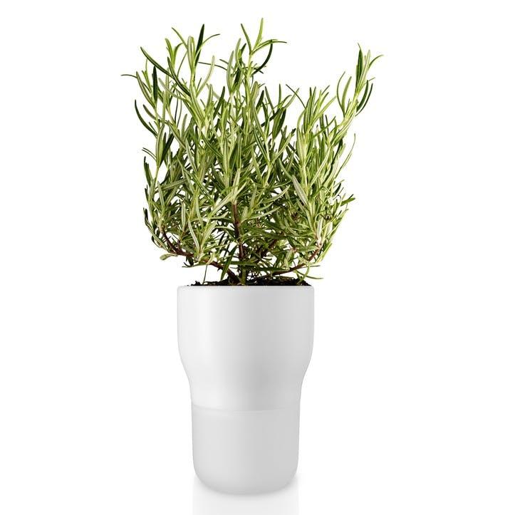 Self Watering Plant Pot, Chalk White