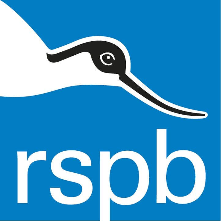 A Donation Towards the RSPB