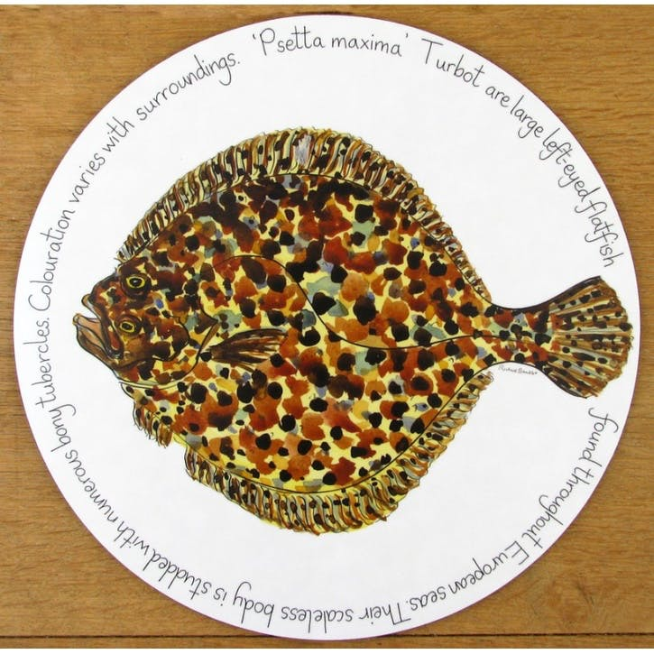 Turbot Tablemat - 28cm
