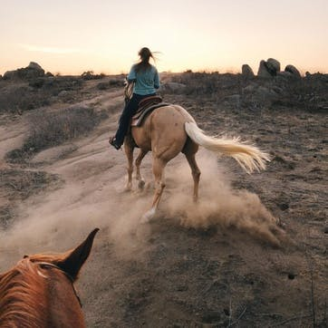 Honeymoon Horse Riding for Two