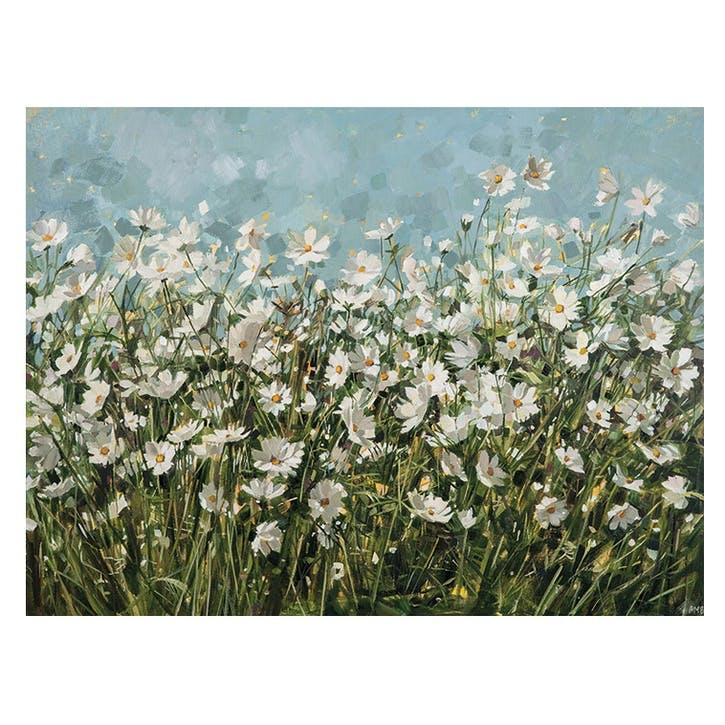 Anne-Marie Butlin White Cosmos Canvas, 60 x 80cm