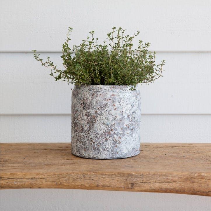 Withington Plant Pot