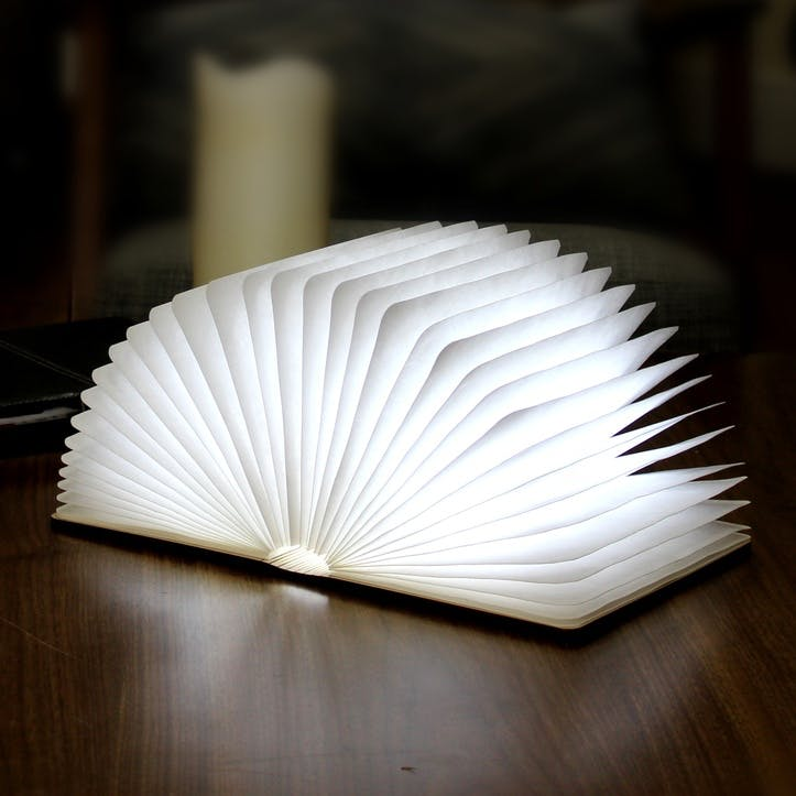 LED Smart Book Light, White Maple Wood