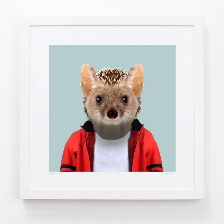 Zoo Portrait Print Long-Eared Hedgehog, 33cm x 33cm