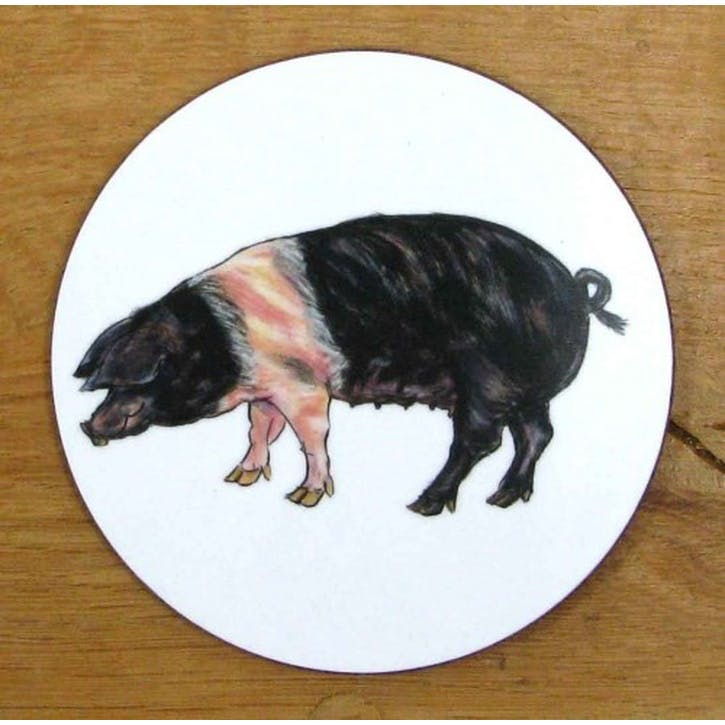 Saddleback Pig Coaster - 10cm