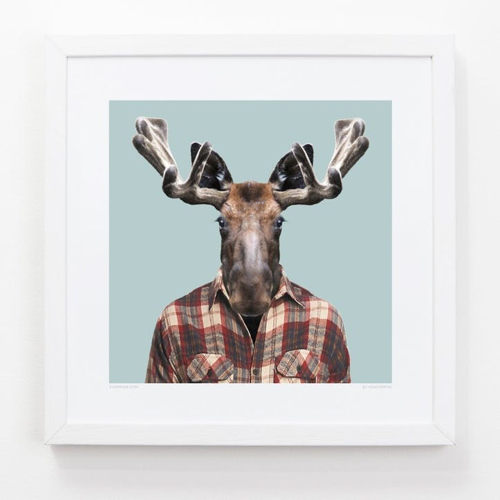 Zoo Portrait Print Moose, 33cm x 33cm
