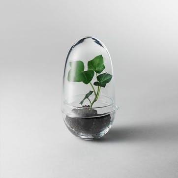 Grow Greenhouse, Small