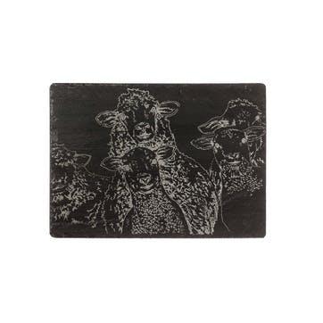 Sheep Cheese Board